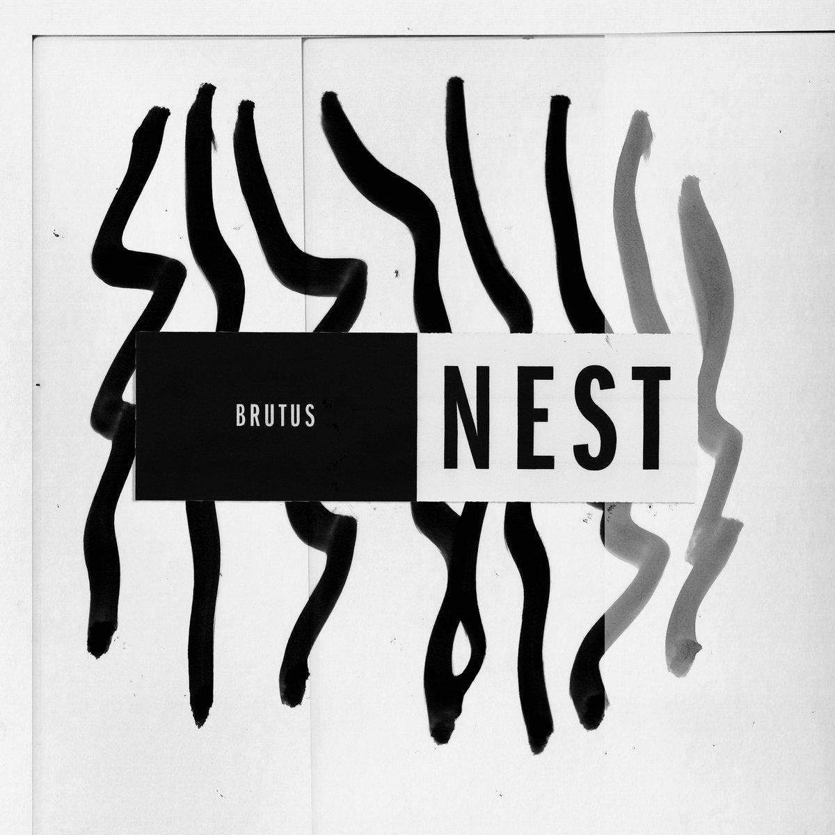 Brutus Nest Chronique